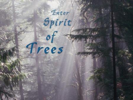 spirit_of_trees_splash.jpg